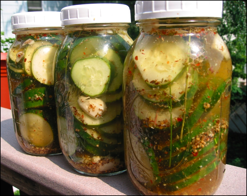 Sour Refrigerator Pickles